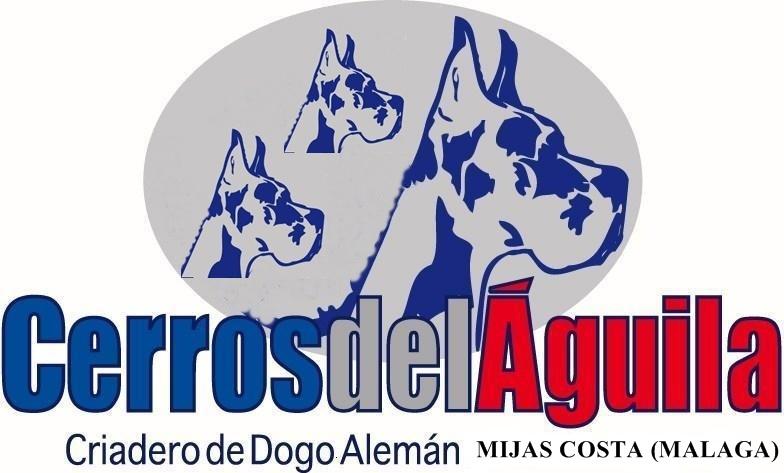 La imagen tiene un atributo ALT vacío; su nombre de archivo es Logotipo-cerrosdelaguila.jpg