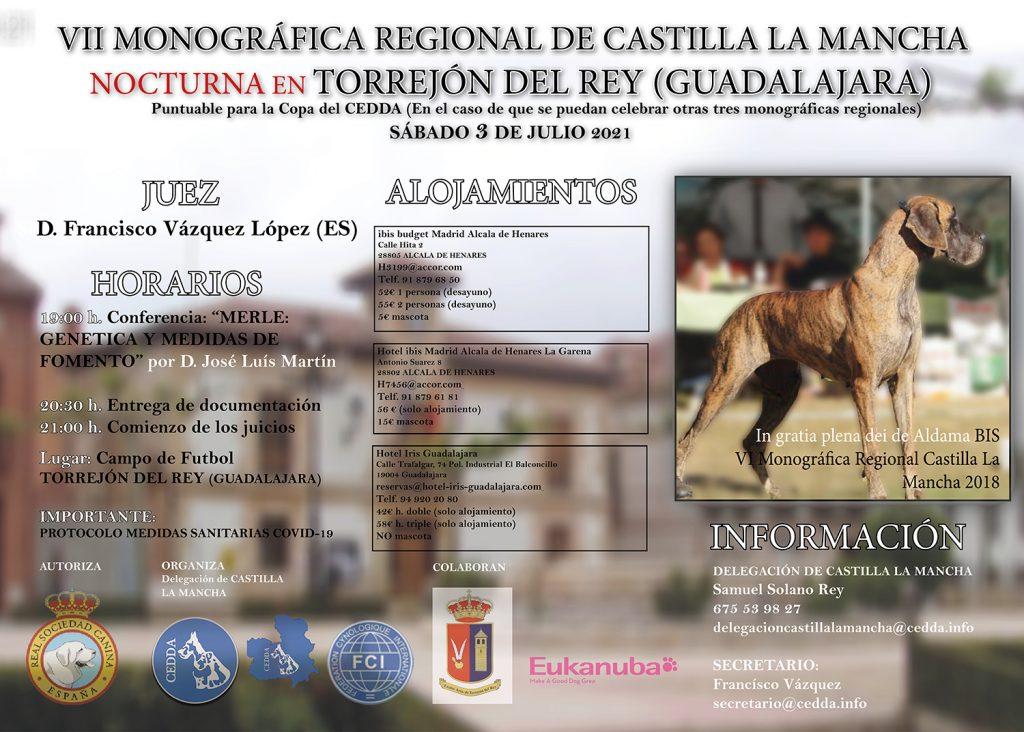 La imagen tiene un atributo ALT vacío; su nombre de archivo es TRIPTICO-VII-MONOGRAFICA-REGIONAL-CASTILLA-LA-MANCHA-torrejon-del-rey-Guadalajara-CEDDA-2021-1024x732.jpg